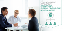 Collaborative Efforts in Counseling, Clinical Psychology, and Social Work