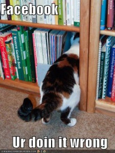 funny-pictures-facebook-library-cat